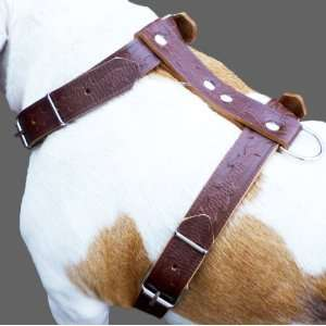 Brown Genuine Leather Dog Harness Large. 27 37 Chest, 1