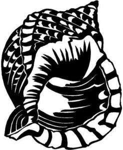 Pacific Triton Sea Shell Vinyl Decal Sticker Car Window